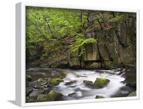 Bode in the spring, Harz National Park, Saxony-Anhalt, Germany-Michael Jaeschke-Framed Photographic Print