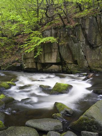 https://imgc.allpostersimages.com/img/posters/bode-in-the-spring-harz-national-park-saxony-anhalt-germany_u-L-Q1F2OQP0.jpg?artPerspective=n