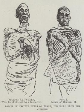 Bodies of Ancient King of Egypt, Unrolled from the Mummies