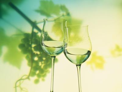 Two Glasses of White Wine; Green Grape Backdrop by Bodo A. Schieren