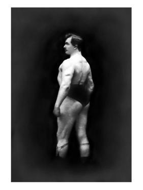 Bodybuilder's Back and Partial Left Profile