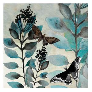 Butteryfly Perspective 3 by Boho Hue Studio