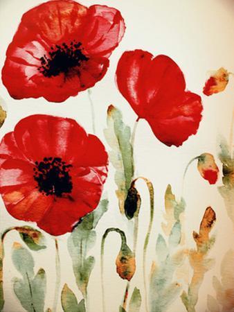 Lipstick Poppies by Boho Hue Studio