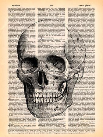 Skull by Book Dictionary Art