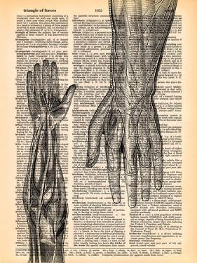 The Arm by Book Dictionary Art