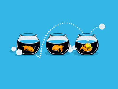 Prepared Fish - Funny GoldFish by Boots
