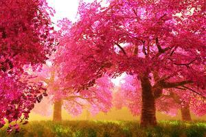 Mysterious Japanese Cherry Blossom Tree Sakura Render by boscorelli