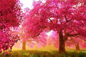 Mysterious Japanese Cherry Blossom Tree Sakura Render by boscorelli