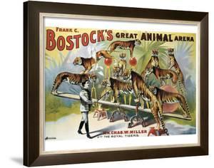 Bostock's Great Animal Arena