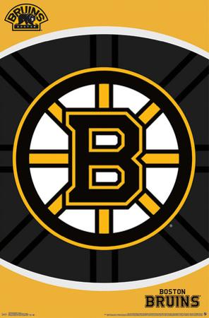 BOSTON BRUINS - LOGO 14