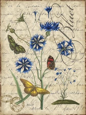 https://imgc.allpostersimages.com/img/posters/botanical-aster-bluet-damask_u-L-Q1CATNZ0.jpg?artPerspective=n