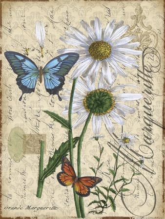 https://imgc.allpostersimages.com/img/posters/botanical-daisey-grande-marqueritte-damask_u-L-Q1CASKV0.jpg?artPerspective=n