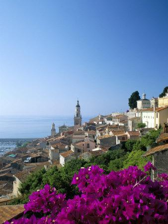 https://imgc.allpostersimages.com/img/posters/bougainvillea-in-flower-menton-alpes-maritimtes-cote-d-azur-provence-french-riviera-france_u-L-P1TI860.jpg?p=0