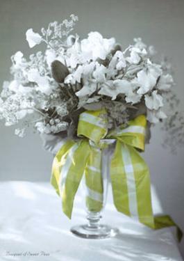 Bouquet of Sweet Peas