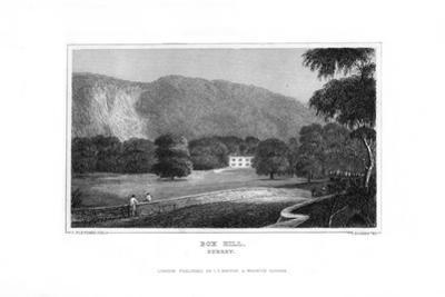 Box Hill, Surrey, 1829 by J Rogers