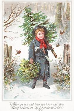 Boy Carrying Christmas Tree over Shoulder, Christmas Card