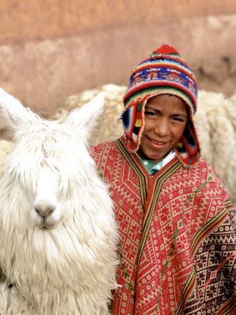 https://imgc.allpostersimages.com/img/posters/boy-in-costume-with-llamas-cuzco-peru_u-L-P2OWCK0.jpg?p=0