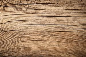 Wood Background by Bozena_Fulawka
