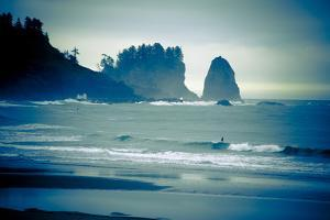 Olympic National Park, Wa: Surfers Brave the Cold Water of the Shore of La Push, Washington by Brad Beck