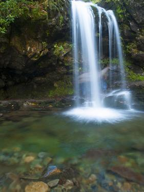 Smoky Mountain Natioanl Park: a Hiker Running Behind Grotto Falls by Brad Beck