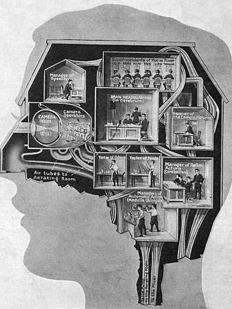 https://imgc.allpostersimages.com/img/posters/brain-business-centre_u-L-Q1071XK0.jpg?artPerspective=n