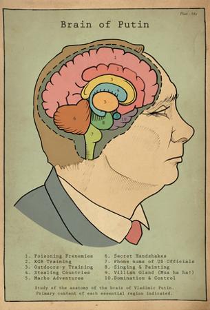 Brain Of Putin