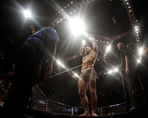 UFC 178 by Brandon Magnus/Zuffa LLC