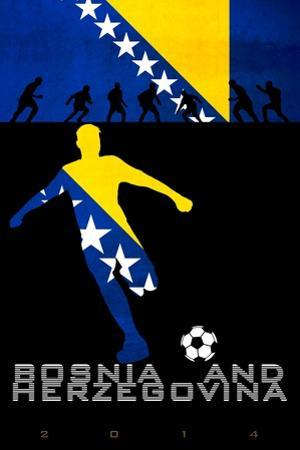 Brazil 2014 - Bosnia and Herzegovina
