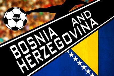 Brazil 2014 - Bosnia and Herzegovina