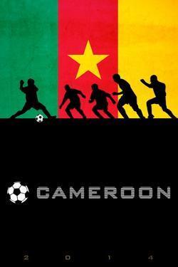 Brazil 2014 - Cameroon