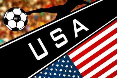 Brazil 2014 - USA