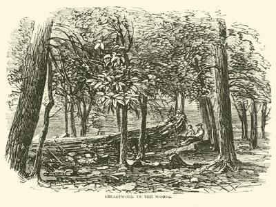 https://imgc.allpostersimages.com/img/posters/breastwork-in-the-woods-july-1863_u-L-PPBKX40.jpg?p=0