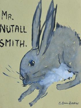 A Rabbit named Mr Nutall Smith by Brenda Brin Booker