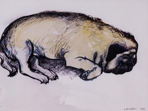 Hogarth Sleeping, 1982 by Brenda Brin Booker