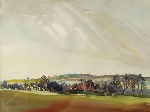 Morning Landscape, 1981 by Brenda Brin Booker