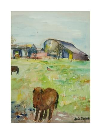 Pony in the Farm Meadow, East Green, 1980
