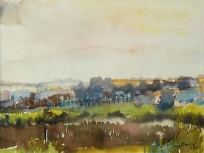 River through the Meadow, 1980 by Brenda Brin Booker