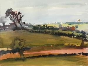 The Farm Road, 1981 by Brenda Brin Booker