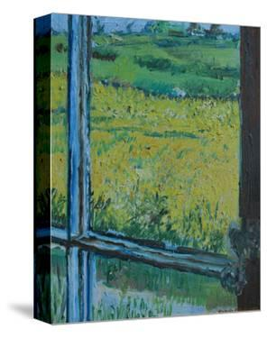 View from the Window by Brenda Brin Booker
