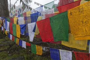 Bhutan. Prayer Flags at the Top of Dochula, a Mountain Pass by Brenda Tharp