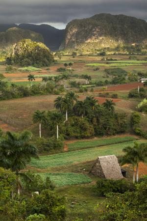 Cuba, Vinales. an Elevated View over the Valley and its Fields and Farms