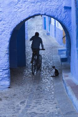 Morocco, Chefchaouen. Bicyclist Rides Past Cat in Archway in the Blue Village of Chefchaouen by Brenda Tharp