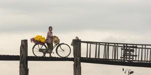 Myanmar, Mandalay. Woman Walks Her Flower-Laden Bicycle across U Bein Bridge by Brenda Tharp