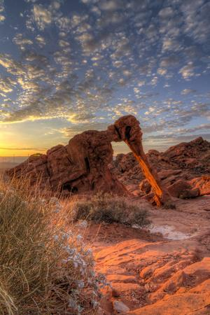 USA, Nevada, Clark County. Valley of Fire State Park. Elephant Rock