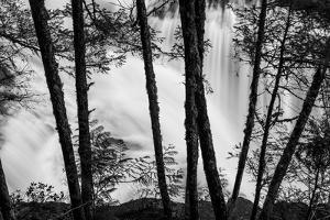 USA, Washington State, Skamania County, Lower Lewis River Falls in BW, behind the pine tree trunks. by Brent Bergherm