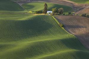 USA, Washington State, Whitman County. Views from Steptoe Butte State Park. by Brent Bergherm
