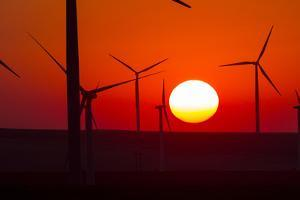 Washington, Walla Walla. Windmills. Stateline Wind Project by Brent Bergherm