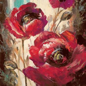Dramatic Poppy by Brent Heighton