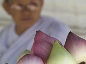 Buddhist Nun Selling Lotus Blossoms, Wat Chana Songkhram by Brent Winebrenner
