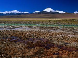 Hot Spring Run off and the Distant Andean Cordillera, San Pedro De Atacama, Chile by Brent Winebrenner